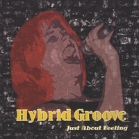 Hybrid Groove | Just About Feeling