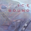 I-C-E (The Improvising Clarinet Ensemble): I-C-E Bound