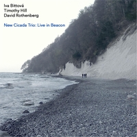 Iva Bittová, Timothy Hill & David Rothenberg | New Cicada Trio: Live in Beacon