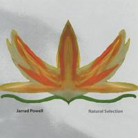 Album cover for Natural Selection