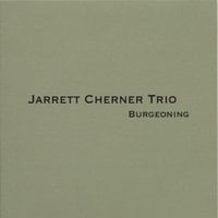 """Somebody Quietly"" by Jarrett Cherner Trio"