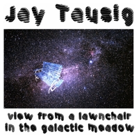Jay Tausig | View from a Lawnchair in the Galactic Meadow