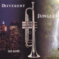 Jeff Elliott | Different Jungles