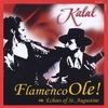 Kalal: Flamenco Ole!