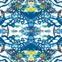 Joe White Magpie | Joe White Magpie