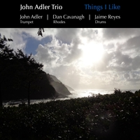 John Adler Trio | Things I Like