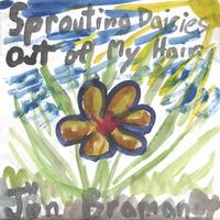 Jon Braman | Sprouting Daisies Out of My Hair