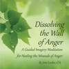 Joni Larlee: Dissolving the Wall of Anger