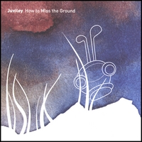 Juviley | How to Miss the Ground