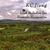 KC JIANG: Irish Melodies for Tremolo Harmonica