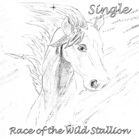 Kevin F. Montague | Race of the Wild Stallion