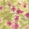 Dragonfly: Aiko Shimada, Elizabeth Falconer, Mako: Island Dreams - songs and lullabies carried on the wind