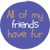 Kylie Stacey | All of My Friends Have Fur
