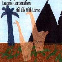 Laconia Corporation | Still Life With Llamas