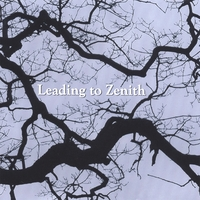 Leading To Zenith | Leading To Zenith