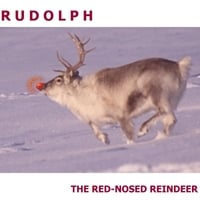 Leon Muhudinov | Rudolph the Red Nosed Reindeer