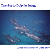 Linda Shay | Opening to Dolphin Energy