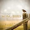 Linda Stoffel: Songbird