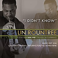 Lin Rountree | I Didn't Know [Nate Harasim Remix] (feat. Althea Rene)