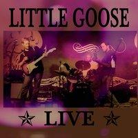 Little Goose: Little Goose Live