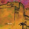 Lou Black: City of No Winters