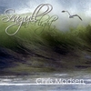 Chris Madsen: Seagull In Flight