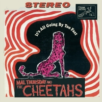 Mal Thursday and the Cheetahs | It's All Going By Too Fast