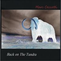 Marc Ceccotti: Back on the Tundra
