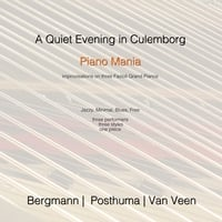 Marcel Bergmann: A Quiet Evening in Culemborg