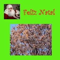 Marcelo Torca: Feliz Natal