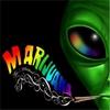 Collin Ozcan: Marijuana: The Musical