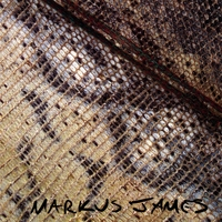 Markus James | Snakeskin Violin