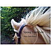 Mary Beth Brace: Spring Trail Ride - Single