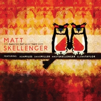 Matt Skellenger | The Owls Are Not What They Seem