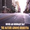THE MATURE GROOVE ORCHESTRA: Never An Ordinary Day
