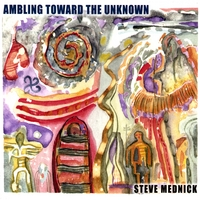 Steve Mednick | Ambling Toward The Unknown