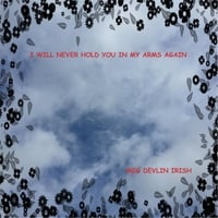 Meg Devlin Irish | I Will Never Hold You in My Arms Again