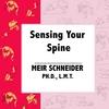 MEIR SCHNEIDER, PHD, LMT: Sensing Your Spine