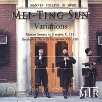 Mannes 2006: Variations