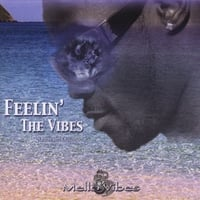 Mello Vibes | Feelin' The Vibes - (Steel Drums)
