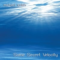 Michael Welsh | Some Secret Velocity