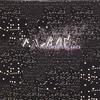 Album: Microbricolages