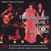 MOJÁCAR: Flamenco Básico - Volume 1: Tangos & Tientos
