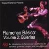 MOJÁCAR FLAMENCO: Flamenco Básico 2: Bulerías