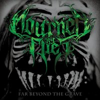 Mourned By Flies | Far Beyond the Grave
