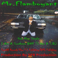 Mr. Flamboyant | I Am a Southern Boy (I Am a S.B)