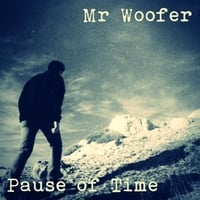 Mr Woofer: Pause of Time