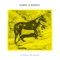 Gerry O'Beirne | Swimming the Horses