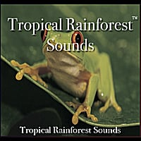 Nelson May | Tropical Rainforest Sounds - 60 Minutes of Tropical rainforest Bliss