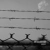 Neurorythm: Dissent